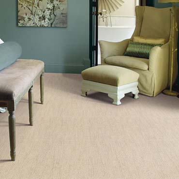 Caress Carpet by Shaw | Warsaw, IN